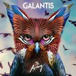 Image result for the aviary galantis